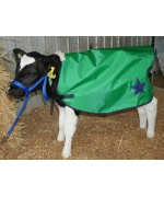 Show Stopper Calf Cover