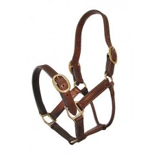 Leather Show Halter