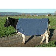 Lined Cow Cover