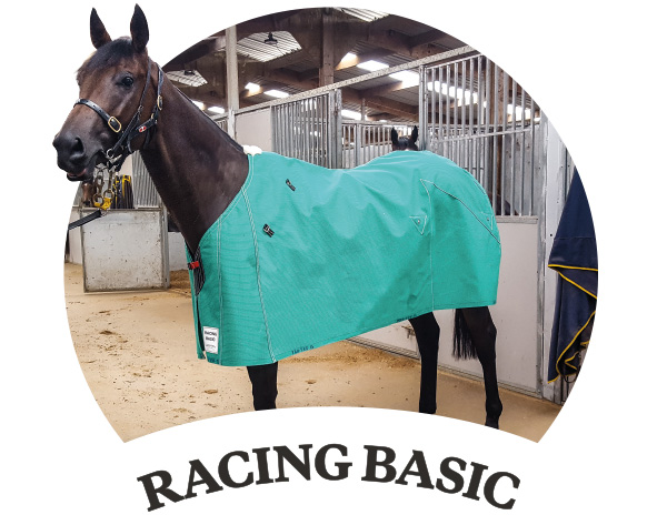 Canvas Horse Covers